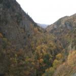 豊平峡の紅葉その3