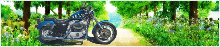 ハーレーダビッドソンのバイクで走ろう